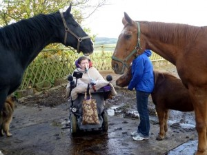 Ute mit Pferden des Tierlebenshofes