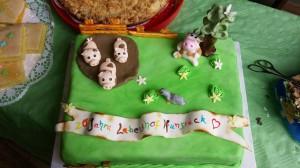 Tierlebenshof Tag der offenen Tür 2016: Die Tierlebenshof-Torte